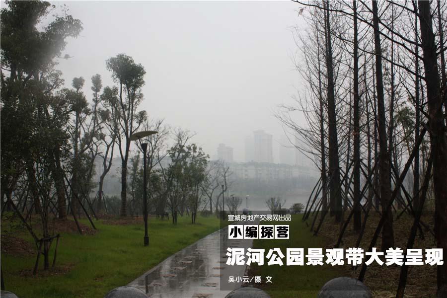 宣城泥河公园景观带大美呈现