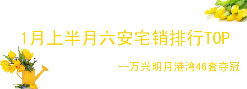 1月上半月六安宅销排行TOP 万兴明月港湾46套夺冠