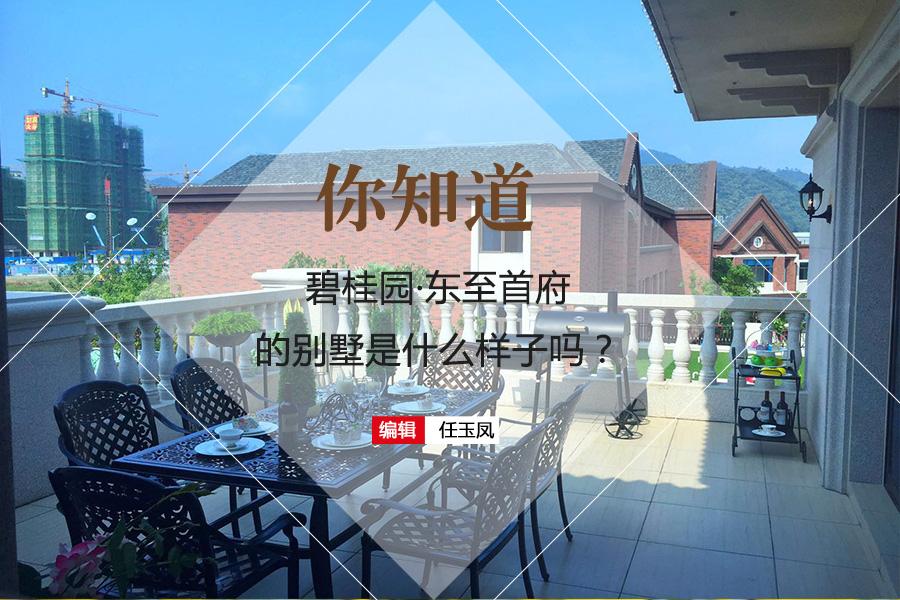碧桂园东至首府别墅、公寓样板房