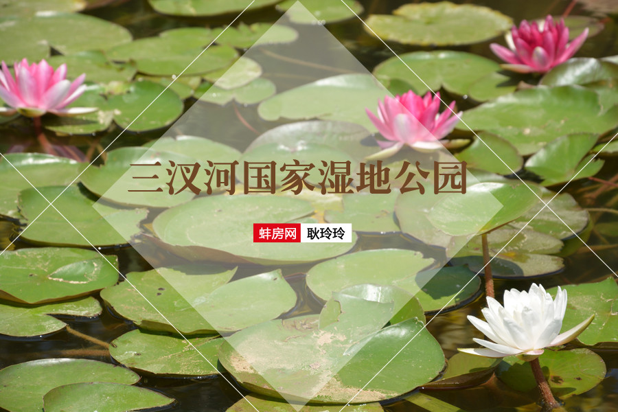 三汊河国家湿地公园