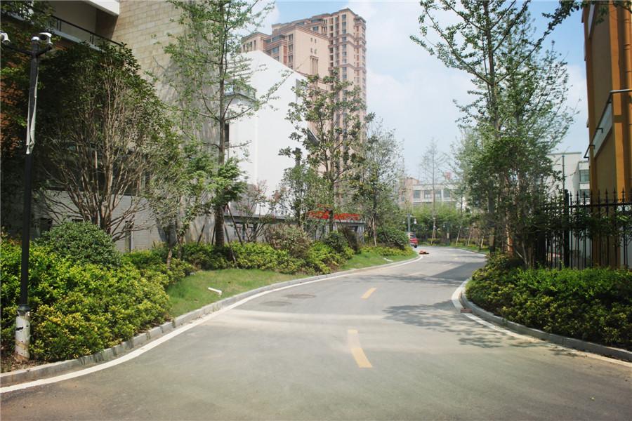 港利上城国际 筑造高品质楼盘 三期盛大开盘