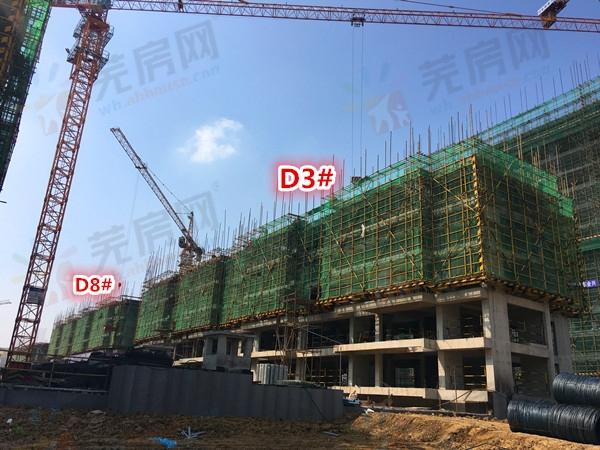 信达翡丽世家:3月工程进度 D1#楼建至5层